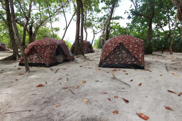 Similan Islands Overnight Tour Package - Bungalow