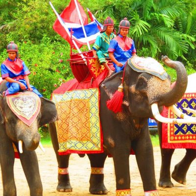 Elephant Theme Show and Crocodile Farm Half Day Tour Bangkok