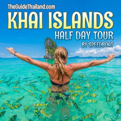 Khai Islands Half day Tour By Speedboat From Phuket