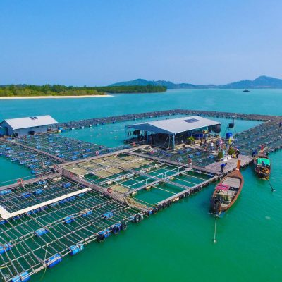 Private tour Pearl Farm