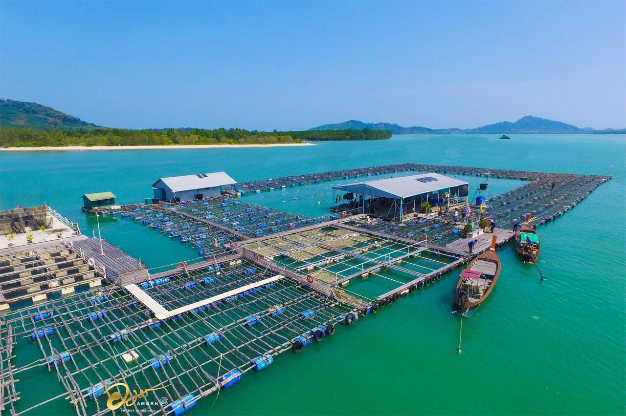 Phuket Pearl Farm Factory
