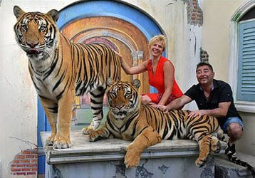 Tiger Kingdom Phuket - El Tigre