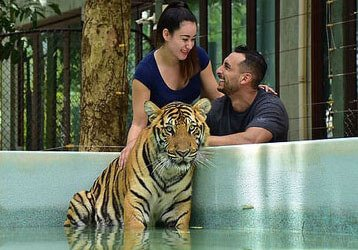 Tiger Kingdom Phuket - Take Two