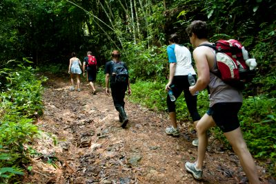 Khaosok Jungle Trekking