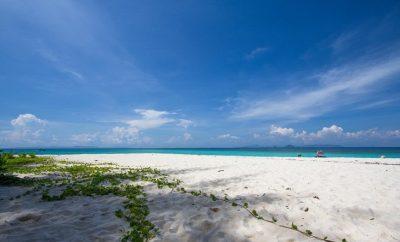 Bamboo Island + Phi Phi Island